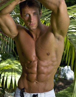 Jungle Matus Tom Cullis by Matus Valent