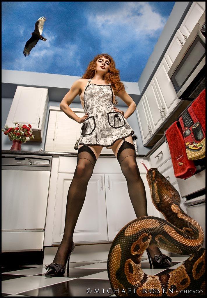 Snake In Kitchen Michael Rosen-chicago by Michael Rosen