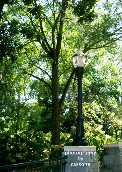 A Street Lamp in Piedmont Park - Location Producer: John W. Cheeves III; Atlanta, GA, USA; 2010 - from the book WHILE IN ATLANTA - PHOTOGRAPHY BY CASSONE, VOLUME II by Antonio Cassone - available on Amazon in Paperback and Kindle Editions formats. (photo by Antonio Cassone)