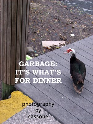 Garbage: It's What's for Dinner photo by Antonio Cassone by Antonio Cassone