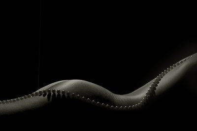 Body and Pearls -  (Mark Holitzki)