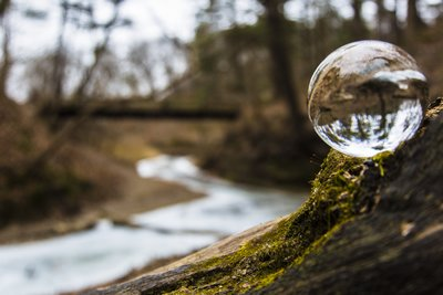 Reflecting Nature Crystal Ball Nature Image in the woods