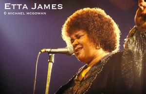 Etta James Opening for the Stones, she rocked, rolled and boogied.