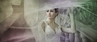Bride under the veil Bride is posing under the long veil