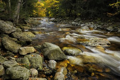 Landscape Fall in Vermont
